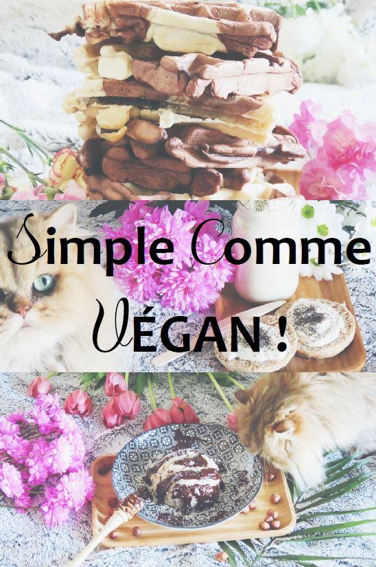 Mon E-Book de recettes végétales !